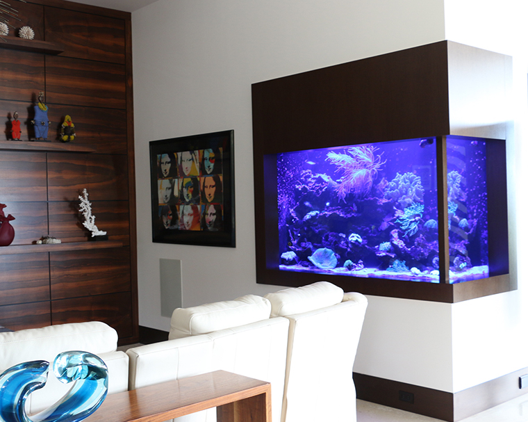Aquarium Maintenance Service