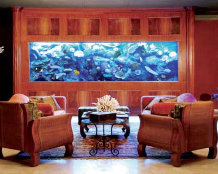 saltwater aquarium maintenance service